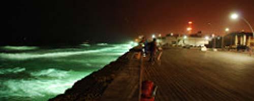 Tel-Aviv Port